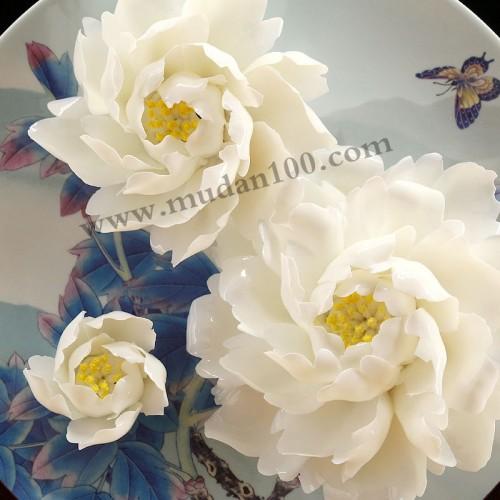 玉板白牡丹瓷细节