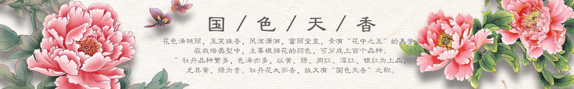 牡丹瓷工艺品网
